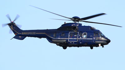 D-HEGP - Aérospatiale AS 332L1 Super Puma - Germany - Bundespolizei
