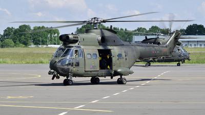 ZJ956 - Westland Puma HC.1 - United Kingdom - Royal Air Force (RAF)