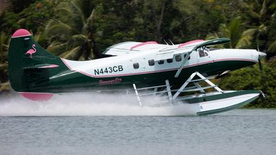 N443CB - De Havilland Canada DHC-3 Otter - Private
