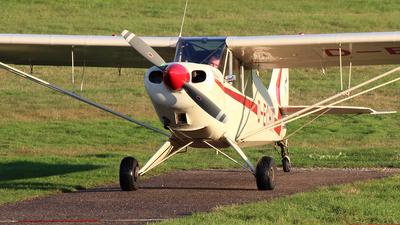 D-ECHA - Aviat A-1A Husky - Private