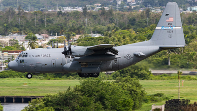 91-1233 - Lockheed C-130H Hercules - United States - US Air Force (USAF)