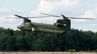 D-667 - Boeing CH-47D Chinook - Netherlands - Royal Air Force