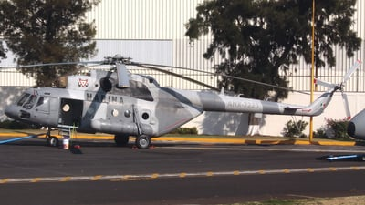 ANX-2223 - Mil Mi-17V5 Hip H - Mexico - Navy