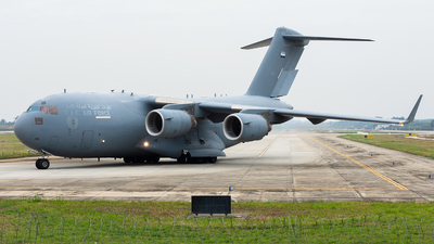 1229 - Boeing C-17A Globemaster III - United Arab Emirates - Air Force