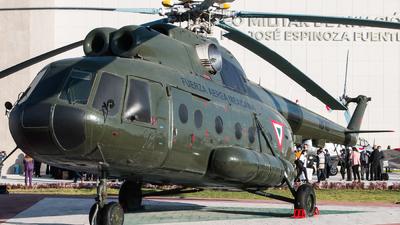 1810 - Mil Mi-8TP Hip - Mexico - Air Force