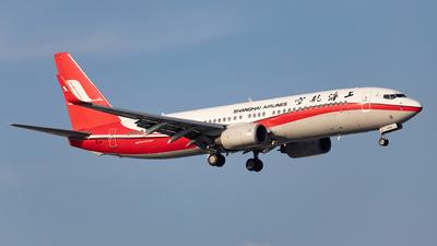 B-5393 - Boeing 737-86D - Shanghai Airlines