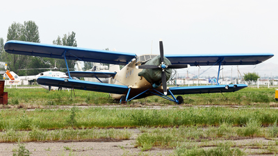 UP-A0280 - PZL-Mielec An-2 - Private