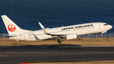 JA302J - Boeing 737-846 - Japan Airlines (JAL)