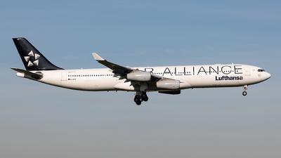D-AIFE - Airbus A340-313X - Lufthansa