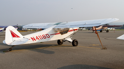 N4116D - Piper PA-11-90 Cub Special - Private