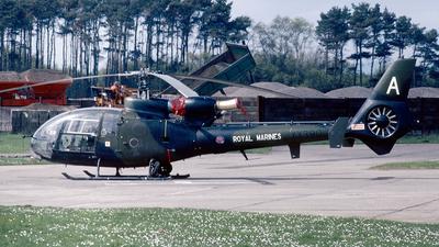 XX390 - Westland Gazelle AH.1 - United Kingdom - Royal Marines