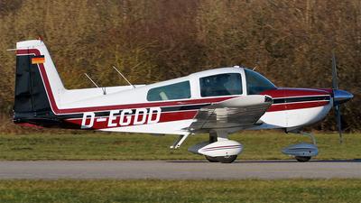 D-EGDD - Grumman AG-5B Tiger - Private