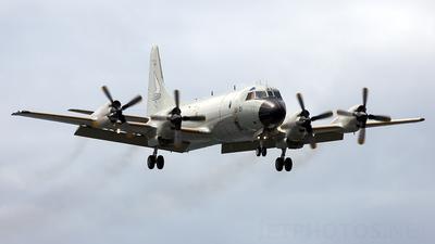 A picture of P.3M08 - Lockheed P3M Orion -  - © Florencio Martin Melian