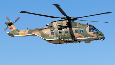 19602 - Agusta-Westland EH-101 Merlin - Portugal - Air Force