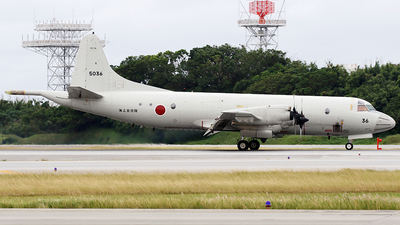 5036 - Kawasaki P-3C Orion - Japan - Maritime Self Defence Force (JMSDF)