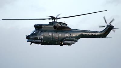 D-HAXT - Aérospatiale AS 332 Super Puma - Germany - Bundesgrenzschutz