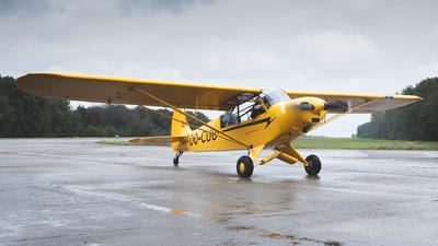 OO-CUB - Piper L-21B Super Cub - Private