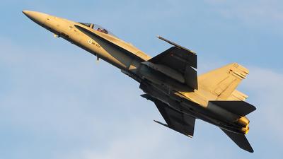 HN-452 - McDonnell Douglas F/A-18C Hornet - Finland - Air Force