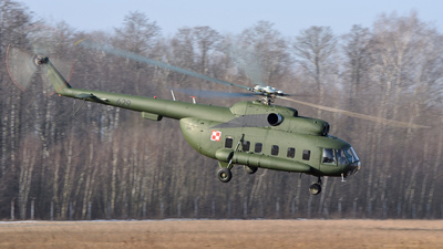 629 - Mil Mi-8P Hip - Poland - Army
