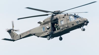 MM81546 - NH Industries NH-90TTH - Italy - Army