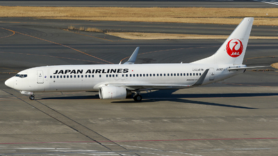 JA307J - Boeing 737-846 - Japan Airlines (JAL)