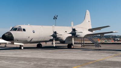 14806 - Lockheed P-3P Orion - Portugal - Air Force