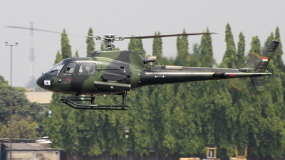 HS-7205 - Eurocopter AS 555 Fennec - Indonesia - Army