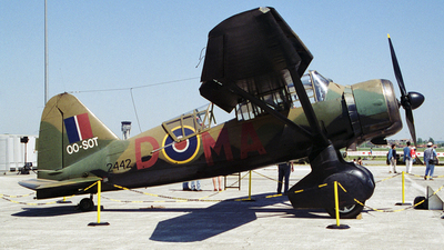 OO-SOT - Westland Lysander Mk.IIIA - Private