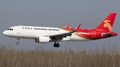 A picture of B1685 - Airbus A320214 - Shenzhen Airlines - © TasKforce404-HK416