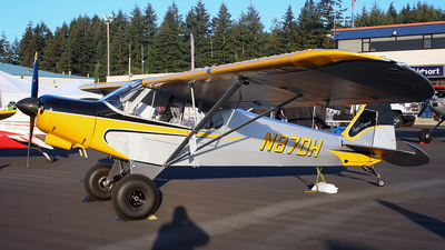 N87DH - American Legend Cub Special - Private