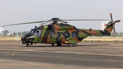 1239 - NH Industries NH-90TTH - France - Army