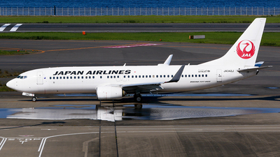 A picture of JA342J - Boeing 737846 - Japan Airlines - © Shogo Kawai