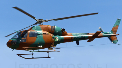 ES-36 - Eurocopter AS 355N Ecureuil 2 - Algeria - Air Force