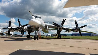 RF-94123 - Tupolev Tu-95MS Bear-H - Russia - Air Force