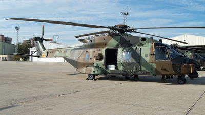 HT.29-02 - NH Industries NH-90TTH - Spain - Army