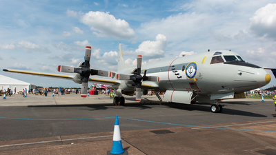 60-05 - Lockheed P-3C Orion - Germany - Navy
