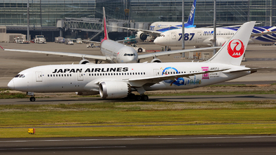 JA837J - Boeing 787-8 Dreamliner - Japan Airlines (JAL)