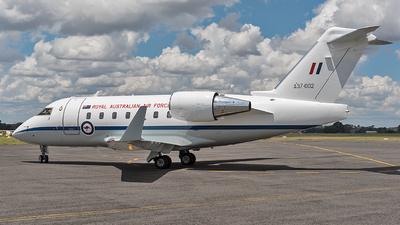 A37-002 - Bombardier CL-600-2B16 Challenger 604 - Australia - Royal Australian Air Force (RAAF)