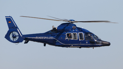 D-HLTH - Eurocopter EC 155B Dauphin - Germany - Bundespolizei