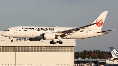 JA842J - Boeing 787-8 Dreamliner - Japan Airlines (JAL)