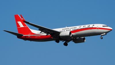 B-1741 - Boeing 737-86D - Shanghai Airlines