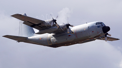 A picture of T.1004 - Lockheed C130H Hercules -  - © Filipe Couceiro