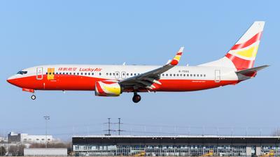 B-7993 - Boeing 737-8AL - Lucky Air