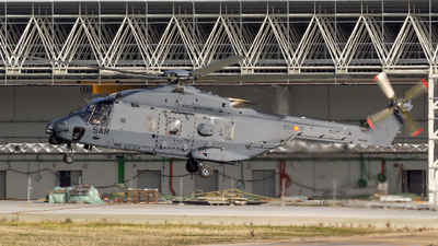HD.29-17 - NH Industries NH-90TTH - Spain - Air Force