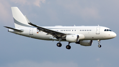 D-ALEX - Airbus A319-115(CJ) - K5 Aviation