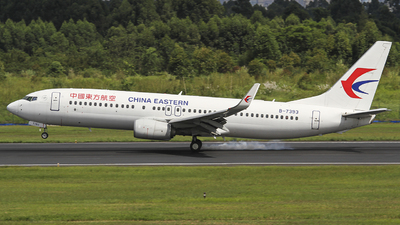 B-7393 - Boeing 737-89P - China Eastern Airlines