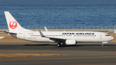 A picture of JA320J - Boeing 737846 - Japan Airlines - © Kinmei