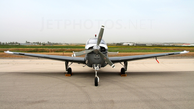 313 - Beechcraft A36 Chofit - Israel - Air Force