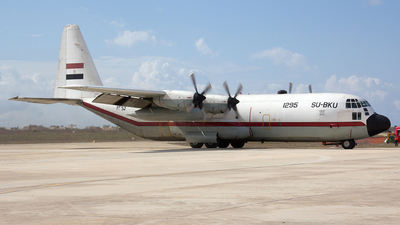 1295 - Lockheed C-130H-30 Hercules - Egypt - Air Force