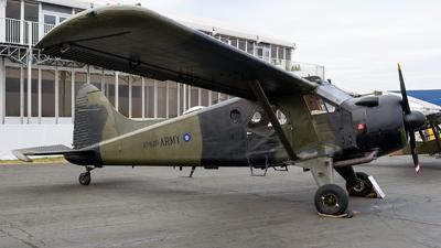 G-CICP - De Havilland Canada DHC-2 Mk.I Beaver - Historic Aircraft Flight Trust